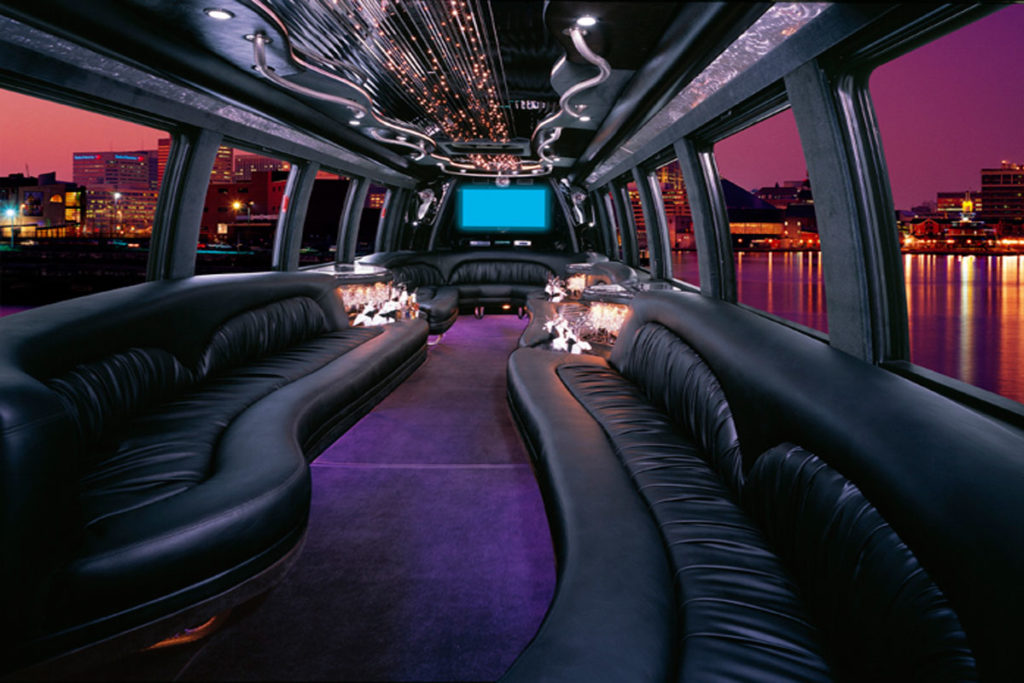 Party Bus Chicago, Chicago Party Bus, Shuttle Bus Chicago, Mini Coach, White Shuttle, Airport Shuttle Bus, Transportation